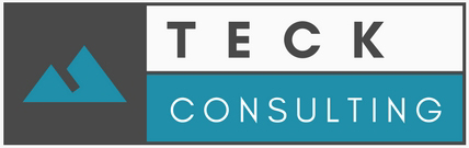Logo Teck Consulting